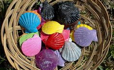 Cómo hacer creaciones con conchas de mar
