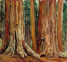 "Kew: Marianne North , ""Castor and Pollux"" in the Calaveras Grove of Big Trees, California"