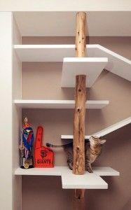 Extremo estantería para el gato, con tronco y rascador