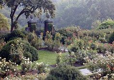 Dumbarton Oaks. A hidden gem, and one of the most beautiful places I've seen in DC.