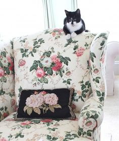 chintz armchair  Susan Branch