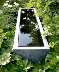 | P | Linear Fountain at Chelsea Flower Show