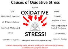 Natürlich Gesund: Free radical scavenging antioxidants: OPC