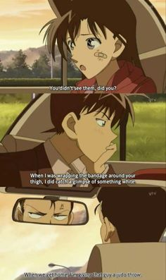 43 Best shinichi and Ran images in 2014 | Conan, Detective
