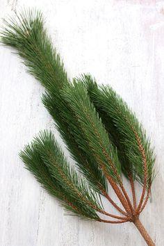 ★お正月準備・門松用の松で作るお正月スワッグ
