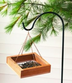 DIY Simple Bird Feeder
