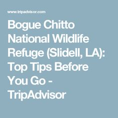 Bogue Chitto National Wildlife Refuge (Slidell, LA): Top Tips Before You Go - TripAdvisor