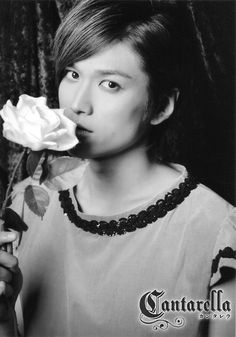 Daichan in Canterella. Love his voice
