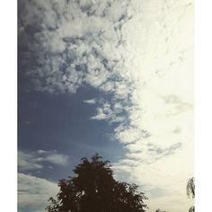 【kinga2_127】さんのInstagramをピンしています。 《#하늘 #구름 #天空 #云 #sky #skyporn #skylovers #clouds #cloud #cloudstagram #thiênnhiên #trời #weather #view #nature #summer #instadayli #niebo #tree #blue #walking #treelover #경치 #森 #countryside》