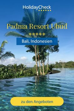"""Erlebe deinen Bali-Urlaub in diesem Bestseller Hotel. In diesem 5-Sterne-Hotel mitten im balinesischen Dschungel finden Wellness-, Hochzeitsreisende, Singles und Familien alles was das Herz begehrt. Bester Service, tolles Essen und ein Infinity-Pool warten in eurem nächsten Urlaub im """"Padma Resort Ubud"""" auf euch. Bereit für Urlaub im Dschungel mit 96%iger Weiterempfehlung und Entspannung pur?  #bali #bestseller #frühbucher #holidaycheck Ubud, Infinity Pool, Resorts, Best Sellers, Hotels, Wellness, The Maldives, Bali Indonesia, Honeymoon Pictures"""