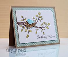 A Blog Called Wanda: Taylored Expressions January 2013 Sneak Peeks! Bless Your Nest and Valentine Graphic Greeting!