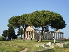 Paestum, Italy.  http://www.worldheritagesite.org/sites/diano.html