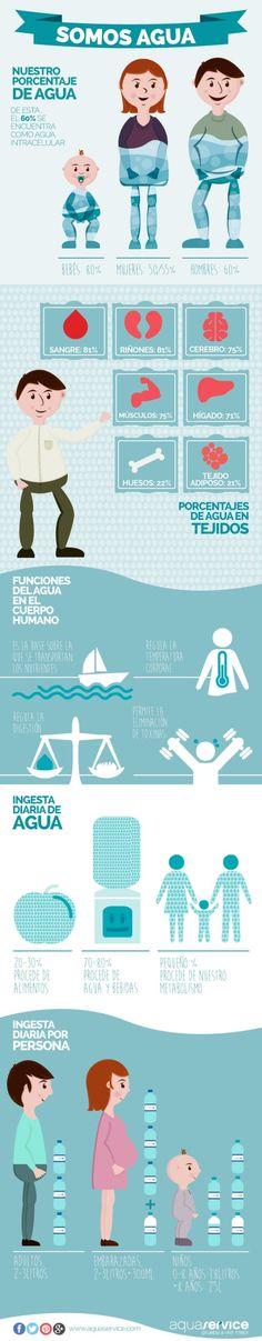 ¡Somos Agua! Celebramos el Día Mundial del Agua con esta infografía del líquido vital. Pinéala. 22 de marzo