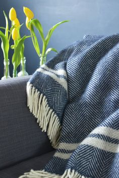 The British Blanket Company: Blue and Mustard Throw Navy Throw Blanket, Sofa Throw, Sofa Blanket, Blue Throws, Wool Throws, Blue Bedroom Decor, Grey Lounge, French Country Bedrooms, Blue Bedding