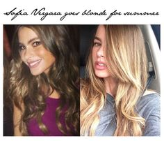 Fashion Foie Gras: Blonde vs Brunette: Sofia Vergara makes the jump