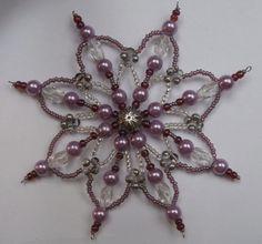 Korálková hvězda fialová