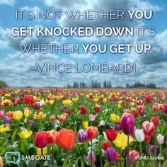 It's not whether you get knocked down it's whether you get up.  -Vince Lombardi #SMSQuotes