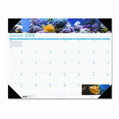 Earthscapes Sea Life Monthly Desk Pad Calendar, 22 x 17, 2012