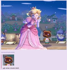 Why is Princess Peach on Animal Crossing? Lol