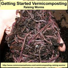 Getting Started Vermicomposting - Raising Worms - create rich, organic humus for your garden or lawn by allowing worms to help in the decomposition process
