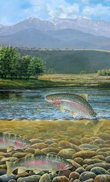 back yard trout fish art