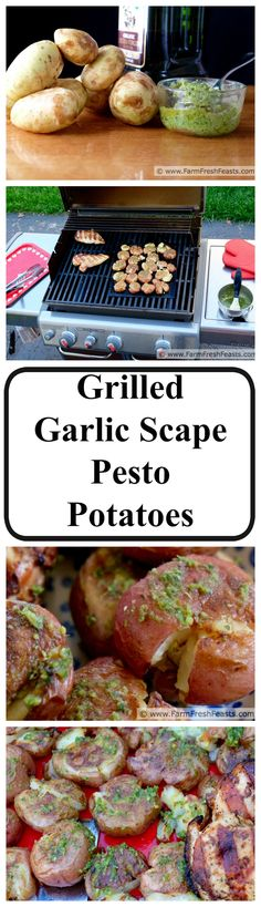 Grilled Garlic Scape Pesto Smashed Potatoes--boil then smash potatoes before brushing with garlic scape pesto and grilling until crispy. Source some garlic scapes in Spring and enjoy this all summer long.