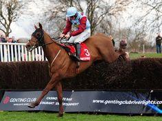 Sam Twiston-Davies on Hunters Lodge at Uttoxeter. Irish Racing, Horse Racing Betting Tips, Big Horses, Hunter Jumper, Lacrosse, Dressage, Hunters, Growing Up, Cool Photos