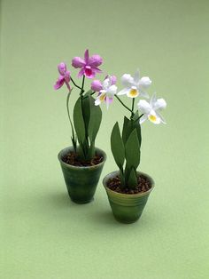 Cattleya Orchid Paper Flower Kit for 1/12th by TheMiniatureGarden