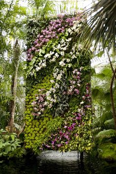 An incredible vertical #orchid garden #wall by fabulous French botanist, Patrick Blanc for the New York Botanical Garden. #verticalgardening #livingwall. Via: http://www.nybg.org/exhibitions/2016/orchid-show/index.php