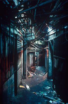 'Harmonious Anarchy': revisiting Hak Nam, Hong Kong's slum city   News