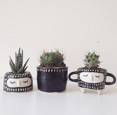 B/W PLANTER SET // Small plant pot Cute plant pot Wheel Thrown Ceramics Hand carved pottery (80.00 CAD) by Hinkleville