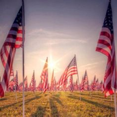 The Healing Fields Murfreesboro TN