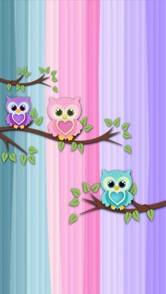 ideas for wall paper fofos femininos coruja Cute Owls Wallpaper, Flower Background Wallpaper, Flower Phone Wallpaper, Cute Wallpaper Backgrounds, Pretty Wallpapers, Cellphone Wallpaper, Flower Backgrounds, Pink Wallpaper, Colorful Wallpaper