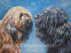 """A Briard Dog art portrait print of an LA Shepard painting 12x16"""". Here's a wonderful tribute to your best friend and favorite breed- the Briard ! from an original painting by L.A.Shepard, whose unique, beautiful work has been collected around the world. Your print will be individually signed under the image by the artist, and initialed on the image. Copyright text is for display purposes only and will not appear on your artwork. The image is 12x16 inches and is printed on 13x19 100%…"""