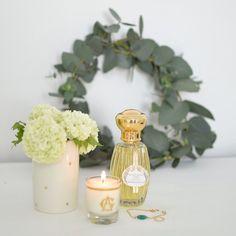 Quelques notes parfumées pour bien commencer la semaineHappy monday IG sous le ☀️#marielapirate#blogdecoathome#lepetitatelierdeparis#annickgoutal#eucalyptus