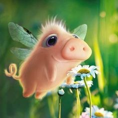 When pigs fly ツ