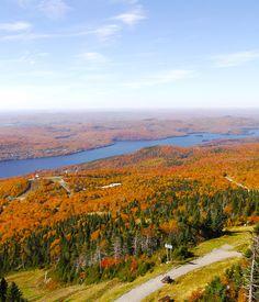秋のカナダがおすすめです。