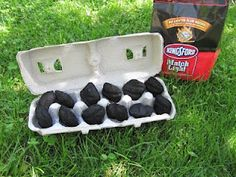 DIY: Fire Starter. So smart!!! The cardboard carton is easy to light with a match and then the charcoal starts too!!    Perfect for bringing camping or starting a fire pit for s'mores!  Storage, transporting and ease of starting...Perfect!! #picnic Camping Fire Starters, Camping And Hiking, Ice Cube Trays, Blueberry, Eggs, Campfire Starters, Blueberries, Egg As Food, Egg