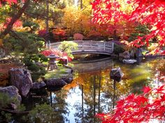 Japanese Gardens in Spokane WA. I've been here several times, and it is always breathtaking.