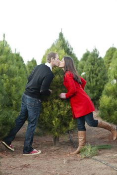 I want to pick out a real Christmas tree next Christmas and take cute pictures! <3