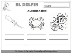 El delfín David, Math, Animals, Dolphins, Sailors, Animales, Animaux, Math Resources, Early Math