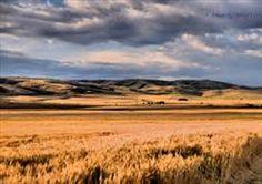 www.pendleton oregon - Bing Images