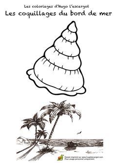 dessin d u0027une sirène sur un rocher avec des coquillages à la main