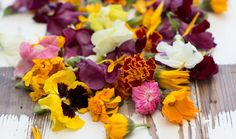 55 Flowers You Can Eat