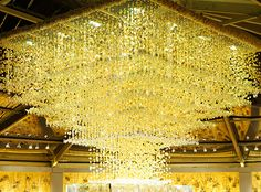 Another shot of the reception bar chandelier at the Prestin Bailey Wedding.  It was made from thousands of Dendrobium Orchids stung together on fillament.  Treasure Island/San Francisco.