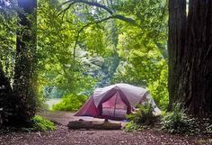 tent camping on the Gualala River! This will be us in 3weeks!