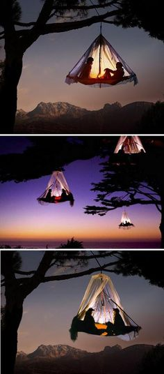 "Tree camping in Germany.   via ""Aurora Borealis"" on Facebook."