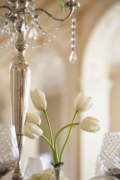 Tulips and candelabra Vanilla Cream, French Vanilla, Silver Trumpet, Vibeke Design, Shabby Chic, Rosa Pink, White Tulips, White Flowers, Estilo Retro