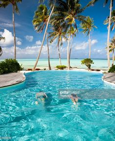 Pacific Islander couple swimming in pool under palm trees