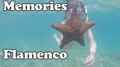 Memories Flamenco - Cayo Coco, Cuba #CayoCoco #Cuba Cayo Coco Cuba, Affordable Beach Vacations, Travel Deals, Memories, Girls, Flamenco, Cuba, Little Girls, Daughters